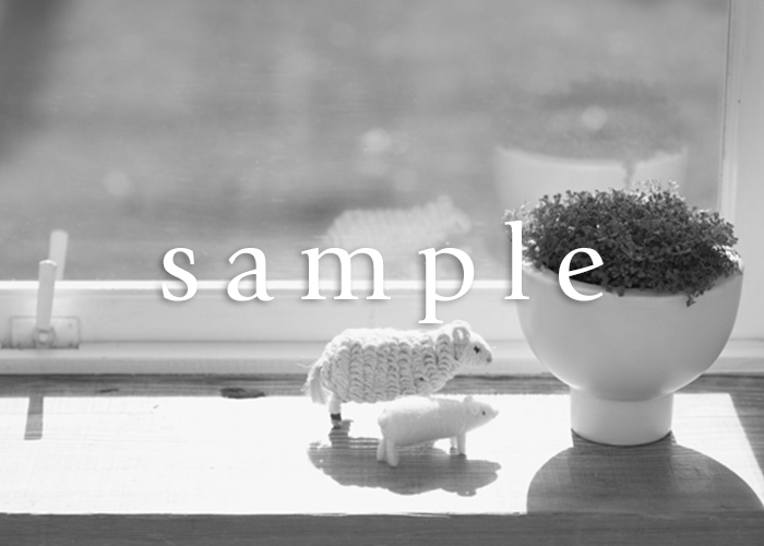 sample_slide_pic_03